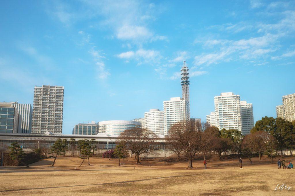 芝生の広場から臨むマンション群と横浜メディアタワー