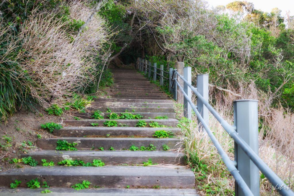 山頂へと続く階段